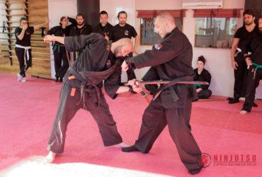 Gyoko Ryu Advanced Seminar